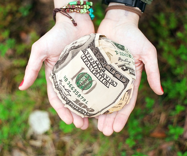 Two hands holding a ball of money - Search Influence